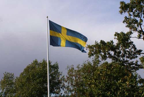 Пять любопытных фактов из жизни детей в Швеции
