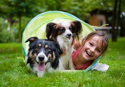 Значение домашних животных в воспитании ребенка