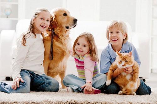 Дети и домашние животные. Помощь в воспитании